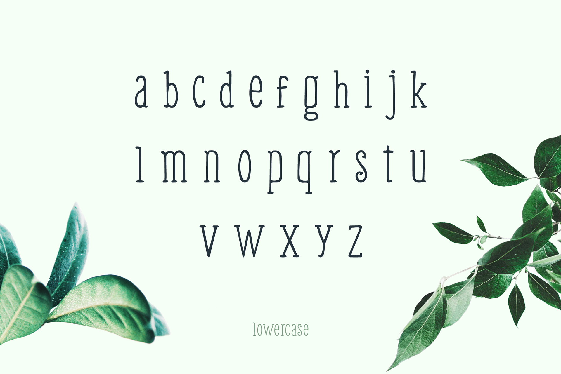 Weem – Free Hand Lettered Font